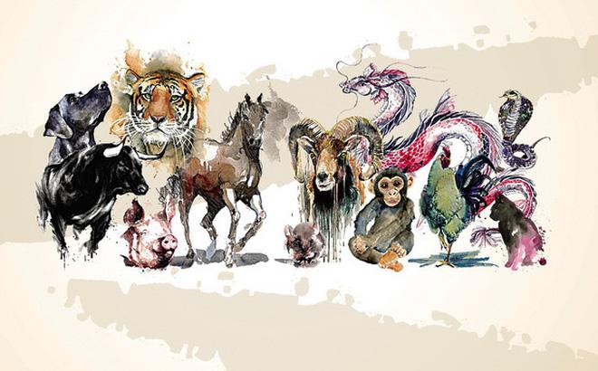 Xem tử vi 2019: Trong số 12 con giáp, có 3 con giáp thường xuyên ...