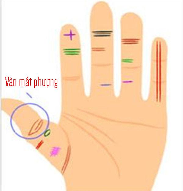 Ngón tay út có đường thẳng kéo dài hình ảnh