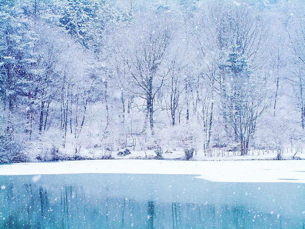 Ảnh tuyết rơi mùa đông đẹp nhất trên khắp thế giới